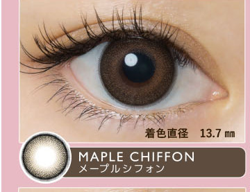 メープルシフォン(MAPLE CHIFFON)