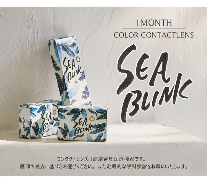シーブリンクマンスリー SEA BLINK 1month