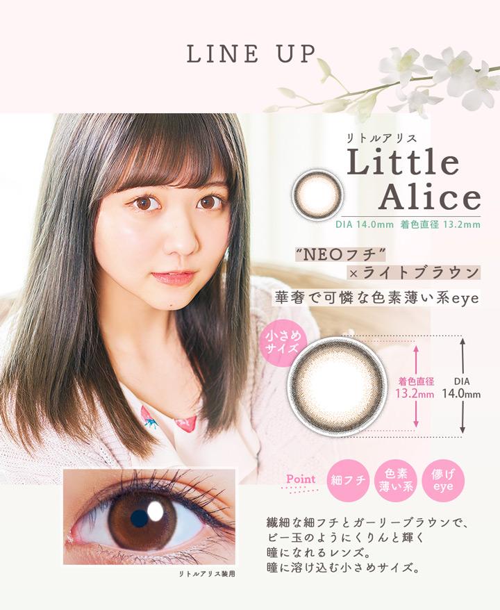 リトルアリス(Little Alice)