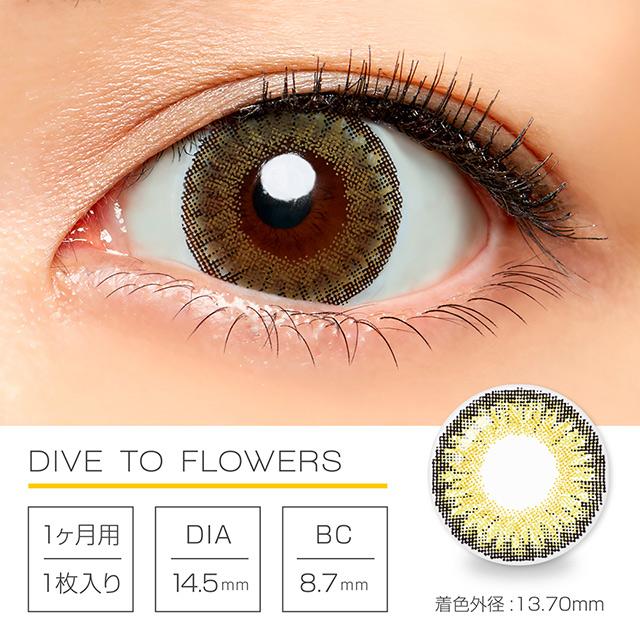 ダイブトゥーフラワーズ DIVE TO FLOWERS