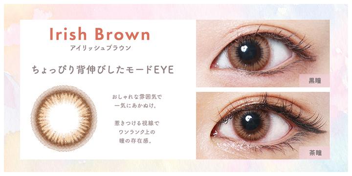 アイリッシュブラウン ilish brown