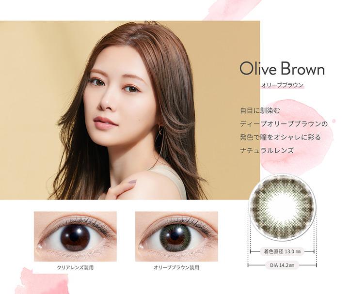 オリーブブラウン Olive Brown