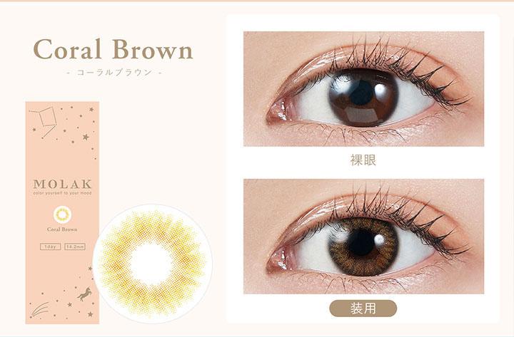 コーラルブラウン  Coral Brown