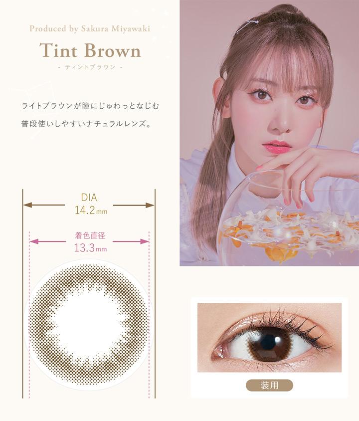 ティントブラウン Tint Brown