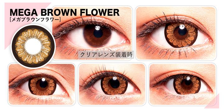 「カラーズ(Colors)」MEGA BROWN FLOWER(メガブラウンフラワー)